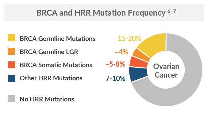Ovarian Cancer Mutation Frequency