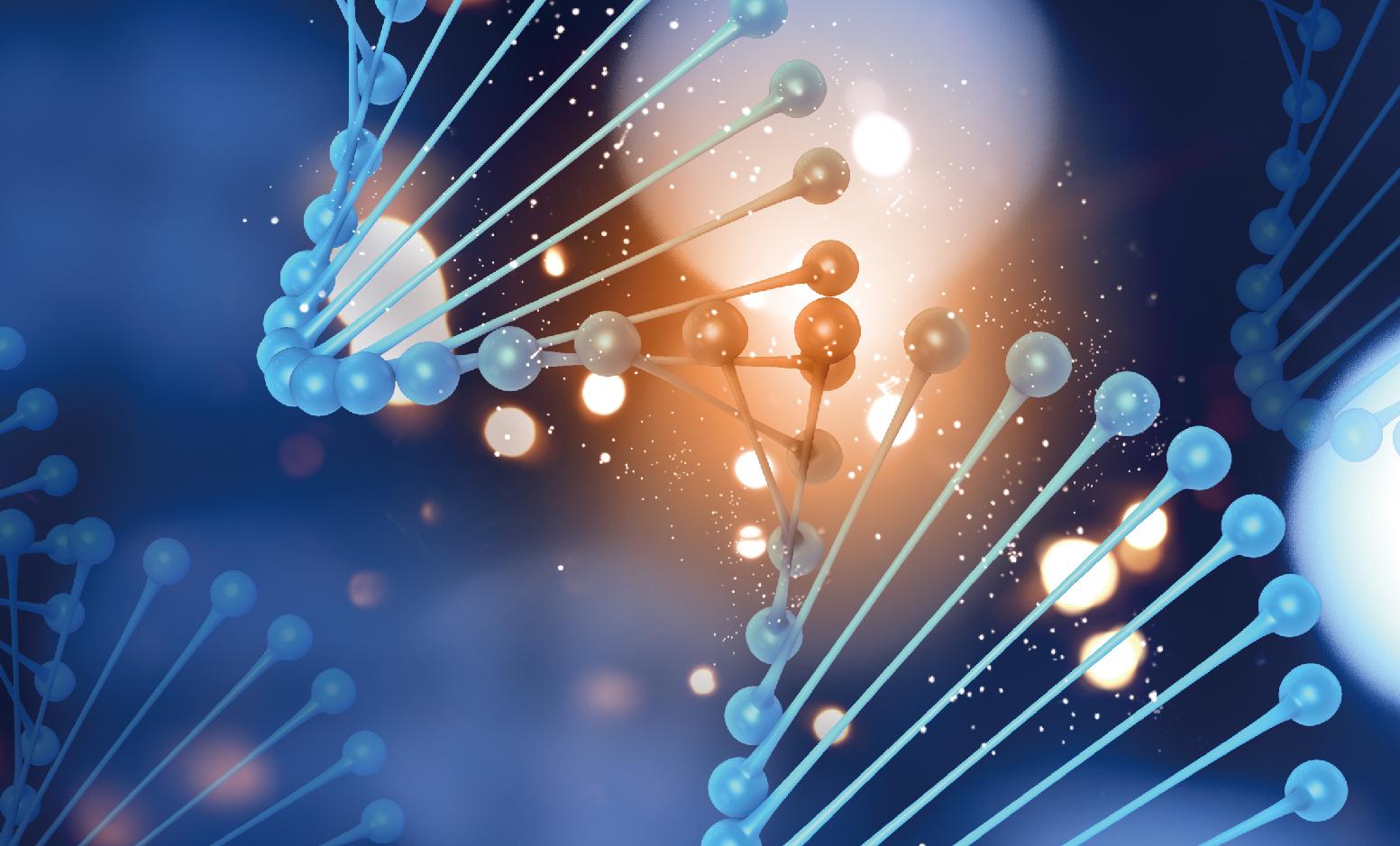 ACTBRCA BRCA癌症基因檢測